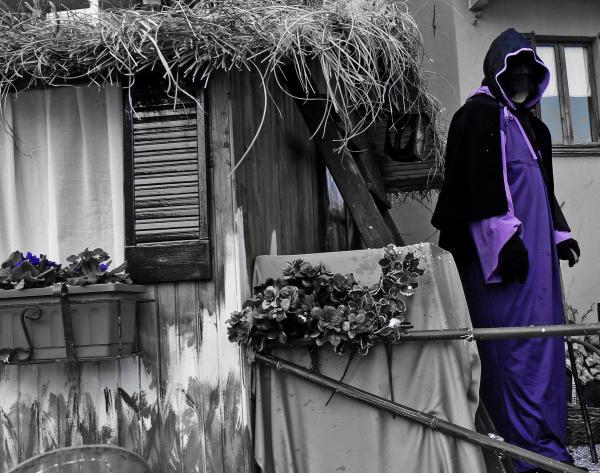 Carnevale colori a parte - Viola